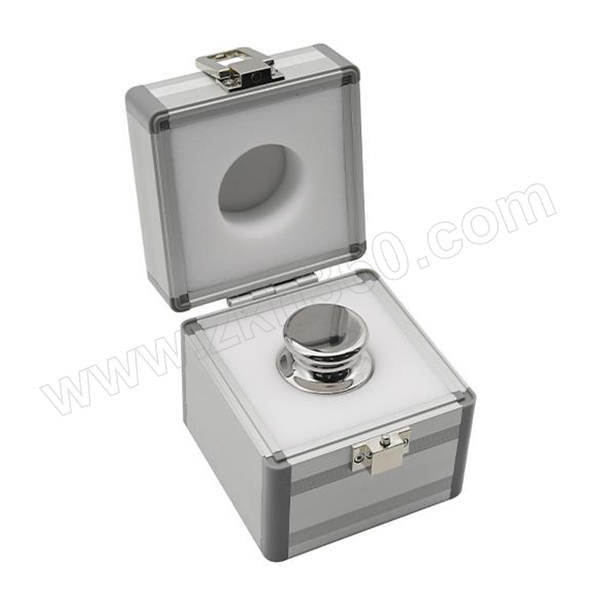FUYUE/富月 不锈钢标准砝码 BFE21003-100g 1盒