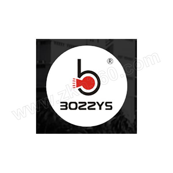 BOZZYS/博士 工程安全塑料挂锁 BD-G01-EB 红色 不同花(KD) 1个